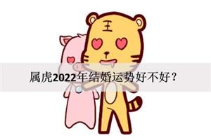 属牛的2022年结婚运势好不好?可共度余生?