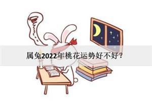 属兔2022年桃花运势好不好?能否喜结良缘?