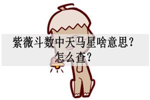 紫薇斗数中天马星啥意思?怎么查?