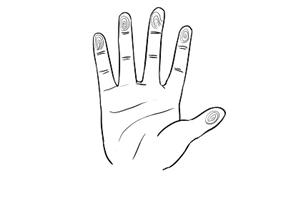 手指螺纹一到十的意义,快看看你的手上有几个斗?