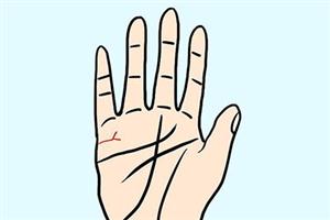 男人手相看婚姻看左手还是右手,什么样的手相婚姻幸福?