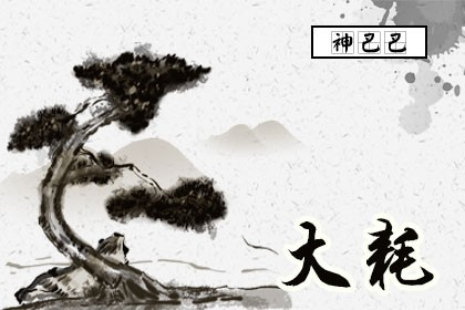 紫微命盘大耗星详解_大耗星入命宫_神巴巴测试网