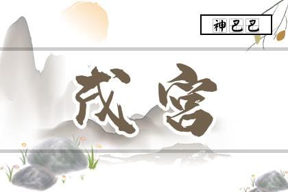 紫微排盘戌宫怎么看_紫微斗数戌宫详解_神巴巴测试网