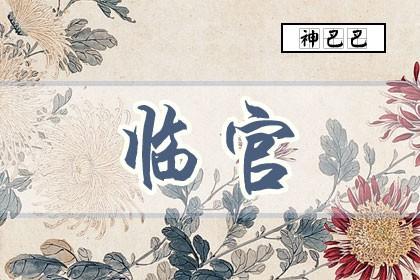 八字临官是什么意思_什么是临官运_神巴巴测试网